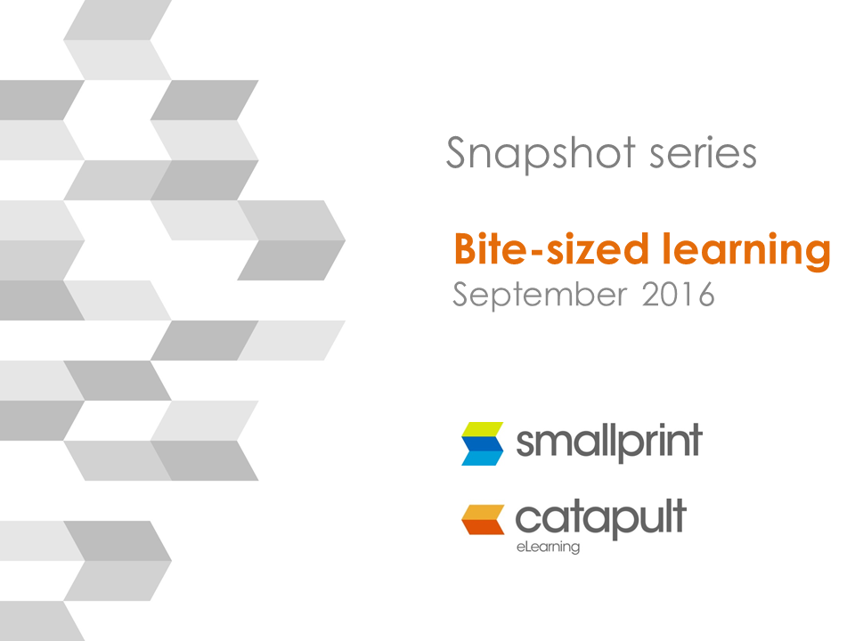 Webinar Snapshot Series Bite-sized Learning